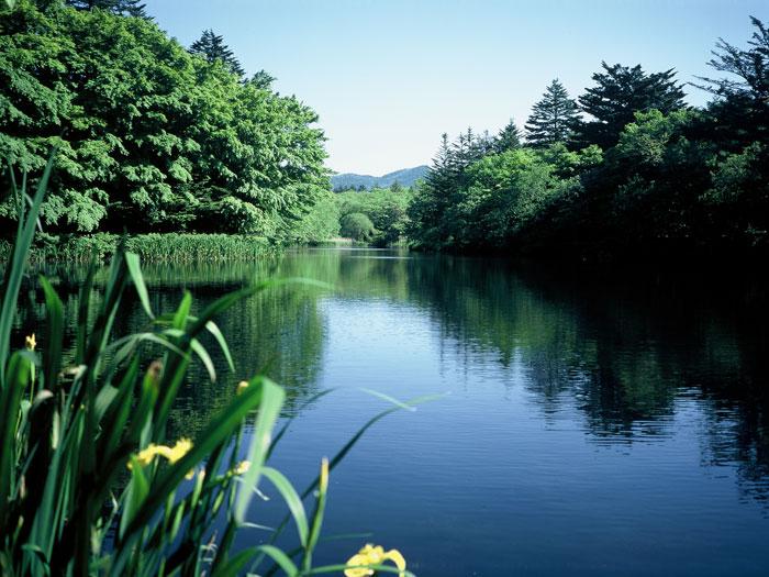 雲場池(写真提供:軽井沢町役場)
