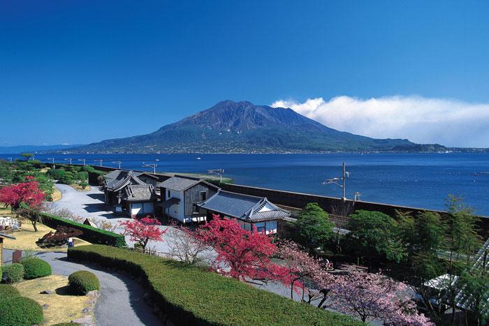 桜島と仙巌園 (写真提供:公益社団法人 鹿児島県観光連盟)
