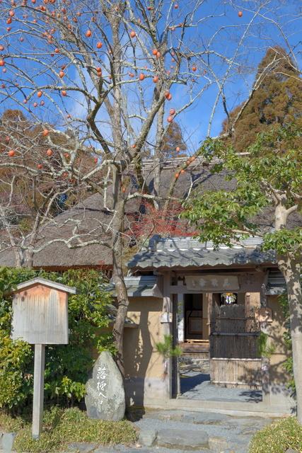 落柿舎 柿の木(写真提供:Photolibrary)