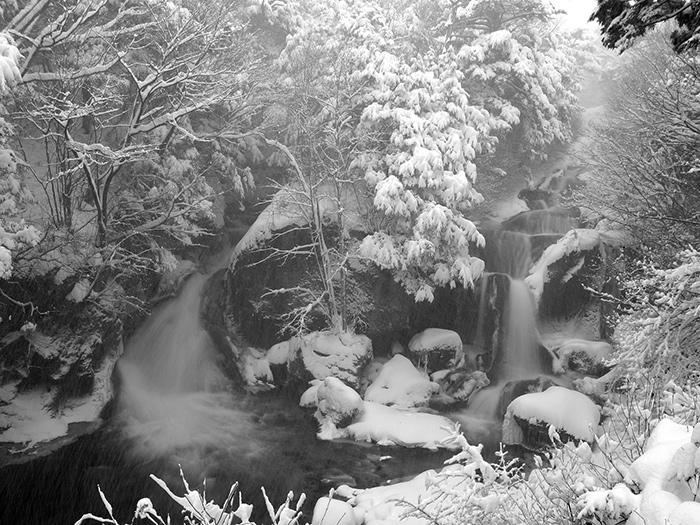竜頭ノ滝(写真提供:日光市観光協会)