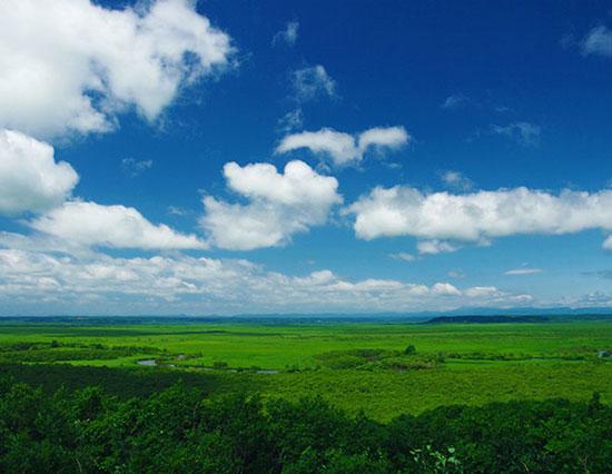 細岡展望台から見た釧路湿原(写真提供:北海道釧路総合振興局商工労働観光課)