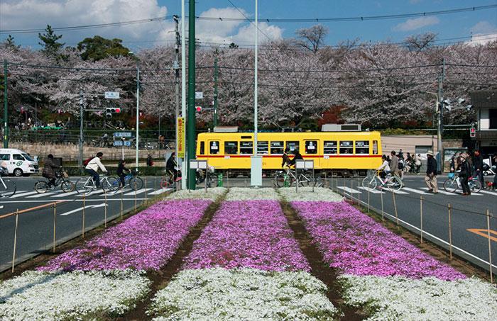 飛鳥山交差点(写真提供:東京北区)